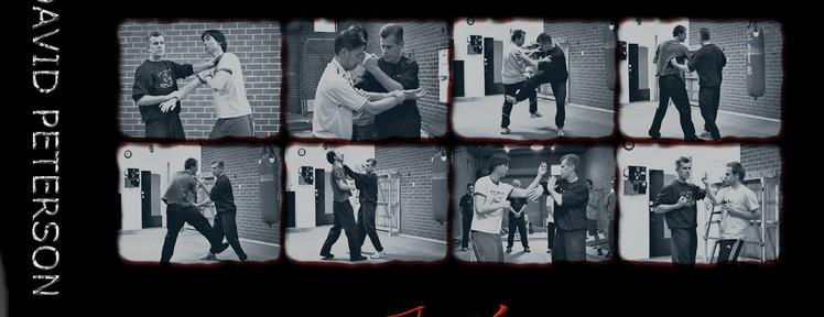 Review – David Peterson's Cham Kiu Seminar DVD