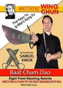 Review - Samuel Kwok - Mastering Wing Chun Vol 6 DVD