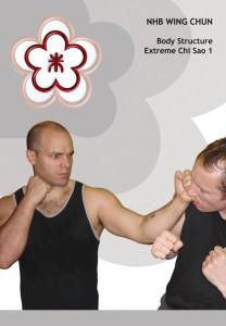 Review - Alan Orr's NHB Wing Chun: Extreme Chi Sao 1