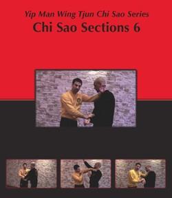 New! Sifu Sergio Chi Sao Part 6