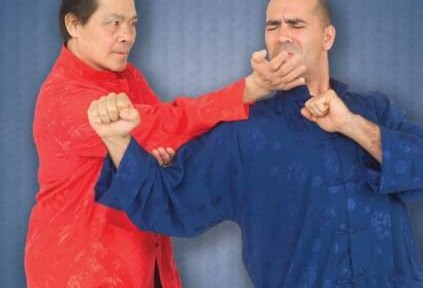 Review – William Cheung's Wing Chun Kung Fu DVD 1