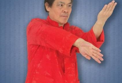 Review – William Cheung's Wing Chun Kung Fu DVD 2
