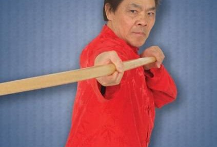 Review – William Cheung's Wing Chun Kung Fu DVD 4