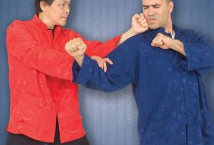 Review – William Cheung's Wing Chun Kung Fu DVD 5