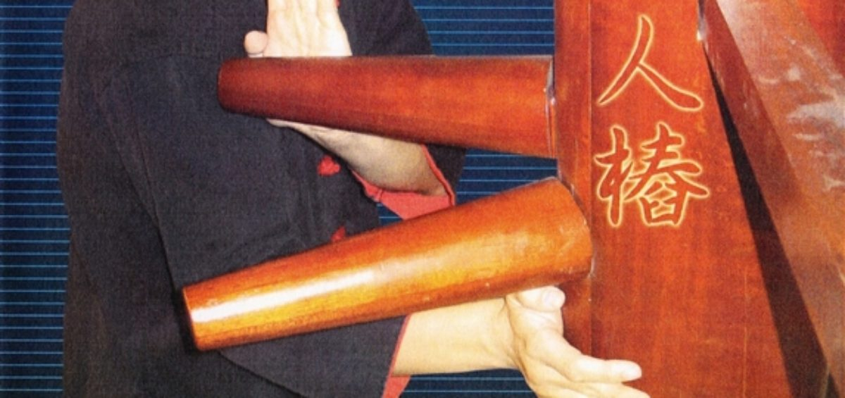 Review - Benny Meng - Wing Chun Wooden Dummy Vol 1