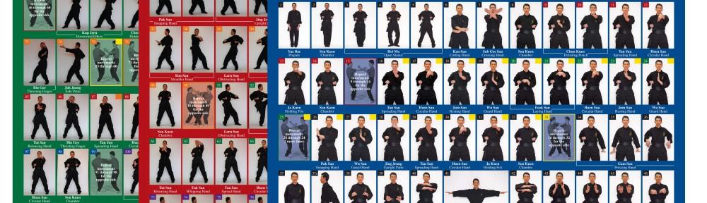 New! Sam Chan – Wing Chun Kung Fu Poster Set