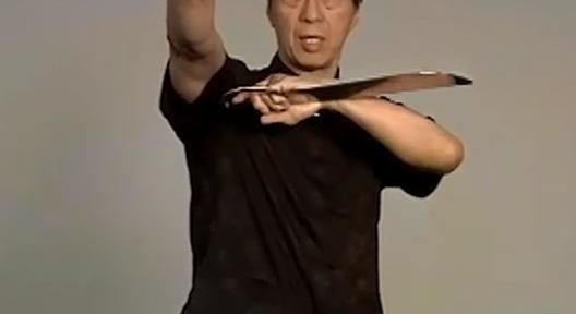 Review – Samuel Kwok – Baat Cham Dao (Butterfly Swords) DVD