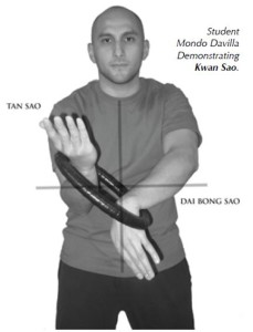 how to hold wing chun ring